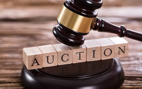 Auction Items- Place your bid